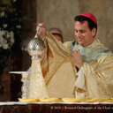Ordination: Bishop Lopes photo album thumbnail 45